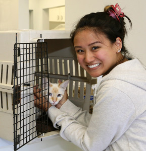 Angel, with Ashley, one of her main caregivers at the veterinary office, as she gets ready for discharge